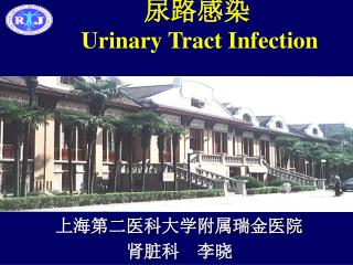 尿路感染 Urinary Tract Infection