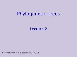 Phylogenetic Trees Lecture 2