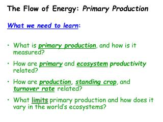 The Flow of Energy:  Primary Production