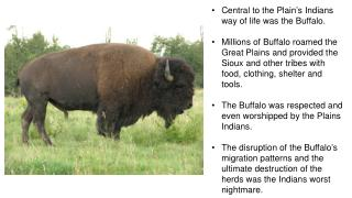 Central to the Plain's Indians way of life was the Buffalo.