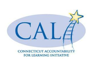 CONNECTICUT ACCOUNTABILTY FOR LEARNING INITIATIVE Executive Coaching