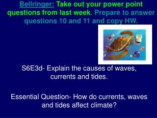 S6E3d- Explain the causes of waves, currents and tides.