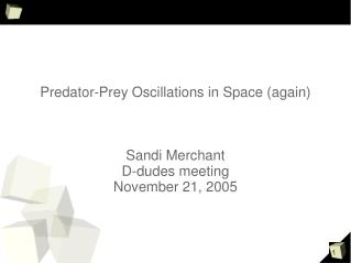 Predator-Prey Oscillations in Space (again) Sandi Merchant D-dudes meeting November 21, 2005