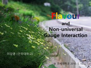 F l a v o u r and  Non-universal  Gauge Interaction