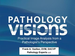 Practical Image Analysis from a Pathologist's Perspective