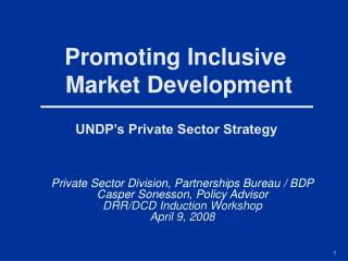 UNDP's Private Sector Strategy