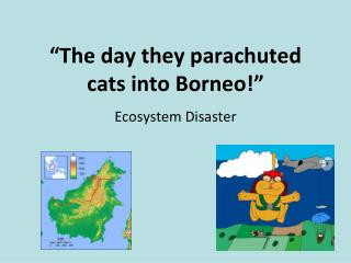 """The day they parachuted cats into Borneo!"""