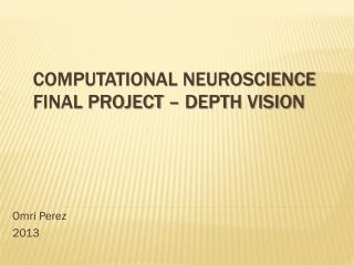 Computational Neuroscience Final Project – Depth Vision