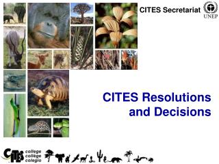 CITES Resolutions  and Decisions