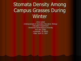 Stomata Density Among Campus Grasses During Winter