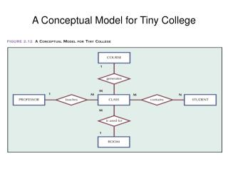 A Conceptual Model for Tiny College