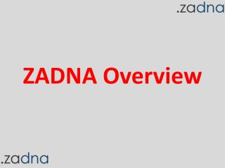 ZADNA Overview