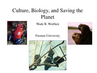 Culture, Biology, and Saving the Planet Wade B. Worthen Furman University