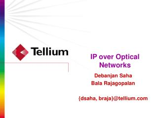 IP over Optical Networks
