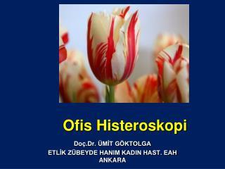 Ofis  Histeroskopi