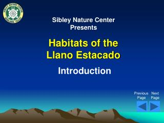 Habitats of the Llano Estacado