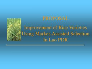 PROPOSAL Improvement of Rice Varieties Using Marker-Assisted Selection In Lao PDR