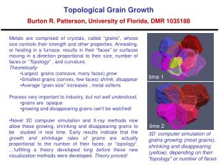 Topological Grain Growth Burton R. Patterson, University of Florida, DMR 1035188