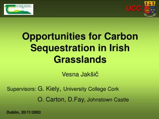 Opportunities for Carbon Sequestration in Irish Grasslands