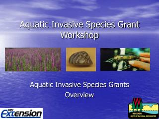 Aquatic Invasive Species Grant Workshop
