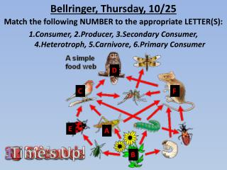 Bellringer , Thursday, 10/25