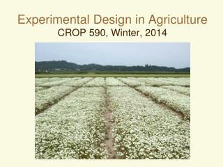Experimental Design in Agriculture CROP 590, Winter, 2014