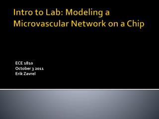 Intro to Lab: Modeling a  Microvascular  Network on a Chip