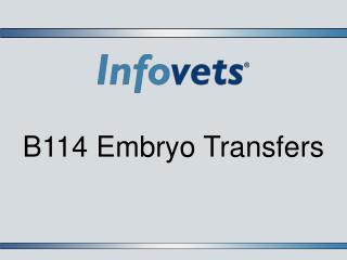 B114 Embryo Transfers