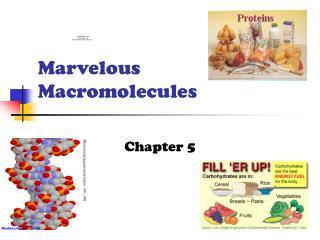Marvelous Macromolecules