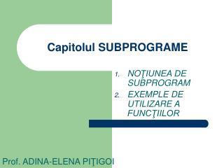 Capitolul  SUBPROGRAME