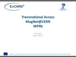 Transnational Access MagNet @CERN WP9b