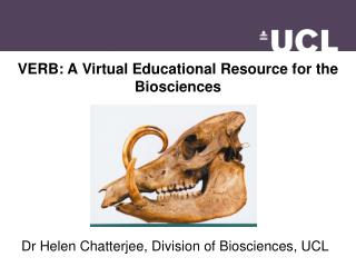 VERB: A Virtual Educational Resource for the Biosciences