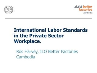 International Labor Standards in the Private Sector Workplace .