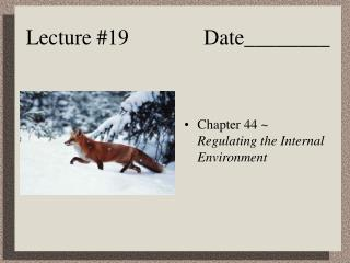 Lecture #19              Date________