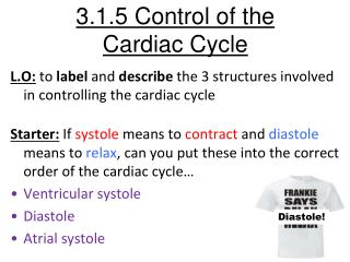 3.1.5 Control of the  Cardiac Cycle