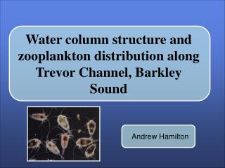 Water column structure and zooplankton distribution along Trevor Channel, Barkley Sound