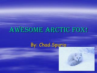 Awesome Arctic Fox!
