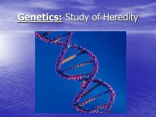 Genetics: Study of Heredity