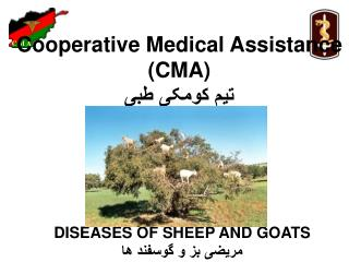 Cooperative Medical Assistance  (CMA)  تیم کومکی طبی