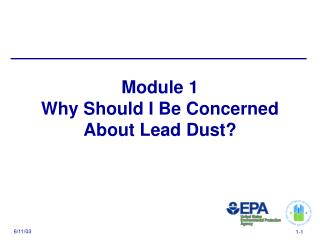 Module 1 Why Should I Be Concerned  About Lead Dust?