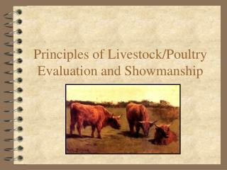 Principles of Livestock/Poultry Evaluation and Showmanship