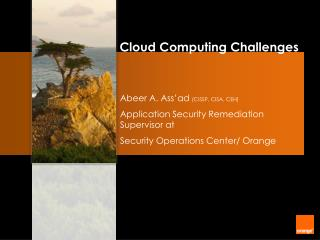 Abeer A. Ass'ad  (CISSP, CISA, CEH) Application Security Remediation Supervisor at
