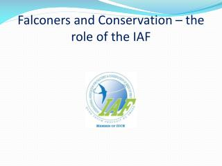 Falconers and Conservation – the role of the IAF