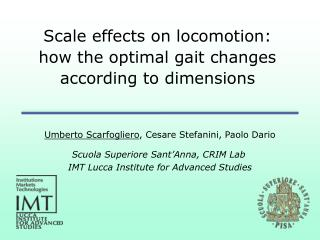 Scale effects on locomotion: how the optimal gait changes according to dimensions