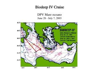 Biodeep IV Cruise DPV Mare oceano June 28 - July 7, 2003