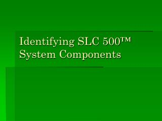 Identifying SLC 500™ System Components