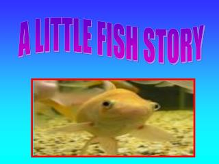 A LITTLE FISH STORY