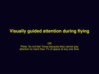 Visually guided attention during flying