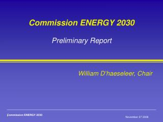 Commission ENERGY 2030 Preliminary Report