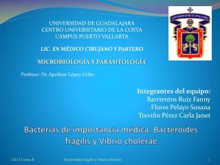 Bacterias de importancia médica: Bacteroides fragilis y Vibrio cholerae
